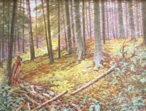 В ялиновому лісі, 1999