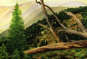 'Високогір'я', 2010, п.о., 60х80