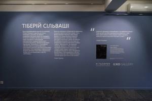 Живопис «Тіберій Сільваші» в Ужгороді