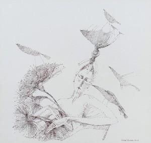 K. Holló Eucalyptus'
