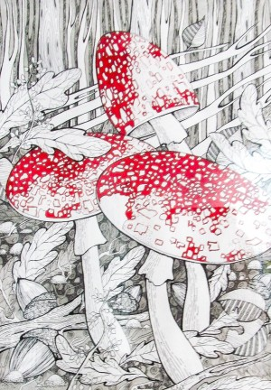 M. Kovach 'Fly-agarics'