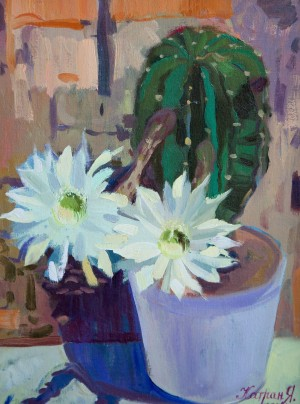 Y. Katran Blooming Cactus', 2017, oil on canvas, 30x40
