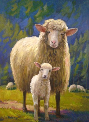 Вівці, к.о., 60х45