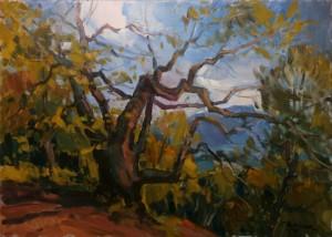 'An Old Oak'