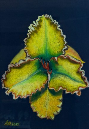 'Strong, Red, Careful, Fast - A Yellow Lily Liudmyla', 2017, pastel on paper