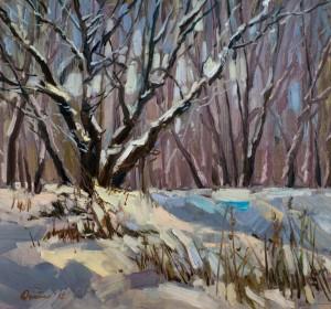 Зимові дерева
