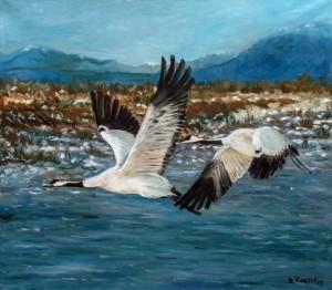 V. Kosto Cranes Fly'