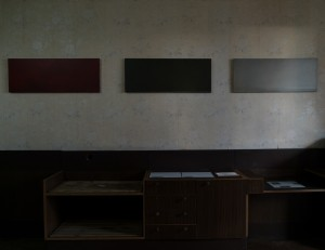 THE ARTIST FROM SUMY ANTON SAIENKO PRESENTED HIS SERIES OF MINIMALISM PAINTINGS IN UZHHOROD