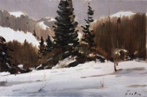 Зимовий пейзаж Закарпаття