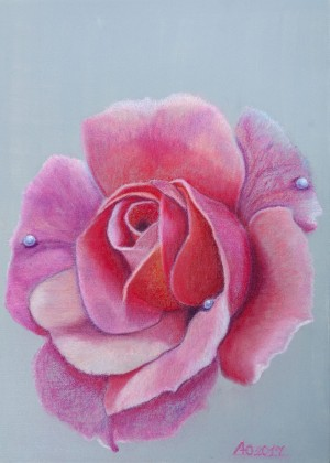 'GGentle, Shining, Fragile And At The Same Time Strong – A Powder Rose Emiliia', pastel on canvas