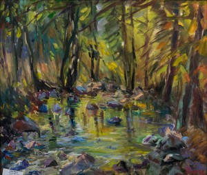 P. Sholtes Mountain stream 2016