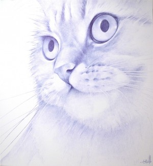 Reaction to Viral Videos and Posts in Social Networks ballpoint pen on canvas 110х120