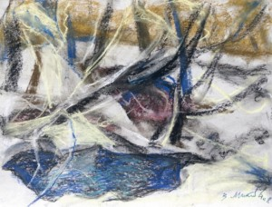Ополонка, 2008, пастель 38х50,5