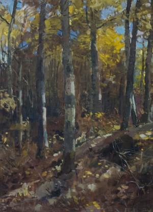 Ліс, 1949