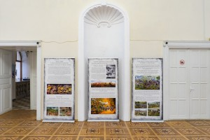 """HISTORY IN A 360 DEGREE"" IN UZHHOROD"