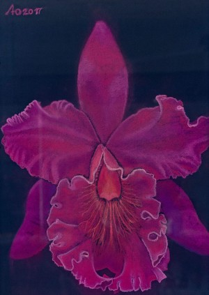 'Womanlike, Magnetic, Erotic, That One Giving Creative Start - A Cyclamen Orchid Olha', 2017, pastel on paper