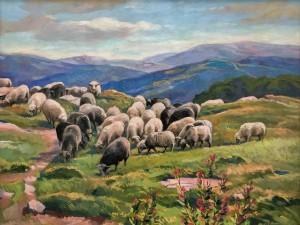 'Вівці пасуться', 2015, к.о., 50х65