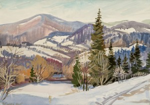 Snowy Pass, 2015