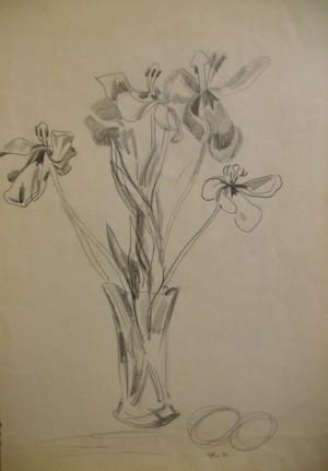 'Irises', 1982, pencil on paper, 61,5х43