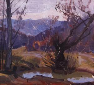 Лісове озеро, 1978, к.о. 42х46