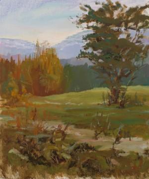 Anton Sukhorebryi. Landscape. 2016