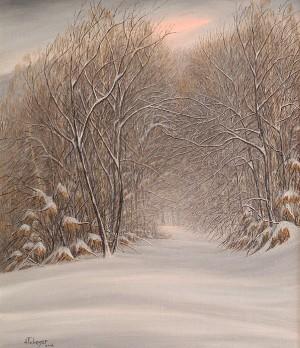 Зима, п.о
