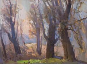 Старі тополі на березі річки Уж, 2016, п.о.