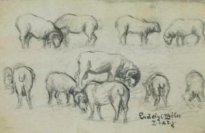 Барани і вівці, 1908 (Сімейна колекція Уманських)