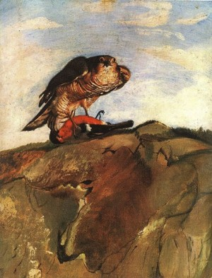 Sparrowhawk Bringing down a Bullfinch 1893