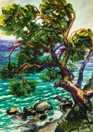 Pine tree above the sea, 1962