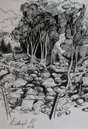 N. Kovchar. Forest