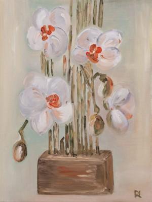 'Орхідеї', 2017, п.о.