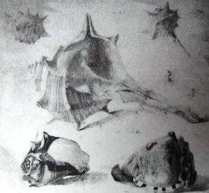Мушлі, 1914, Приватна колекція