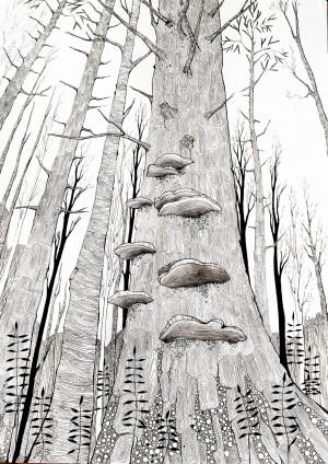 'Калина', 2012, зміш.техн., 45х70