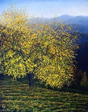 Осіння Яблунька, п.,о. 52x42
