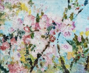 Гал О. Сакура цвіте