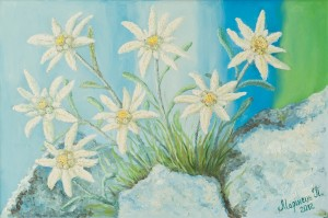 Edelweiss. Silk Flower, 2012, oil on canvas, 90x60
