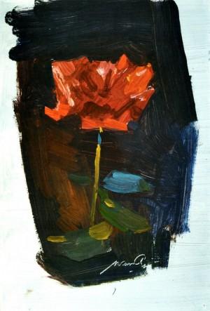 Червона троянда, кін. 1950-х, к.о. 25х18,5