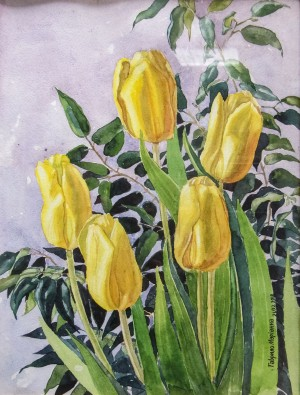 M. Havrylo 'Yellow Tulips', 2012