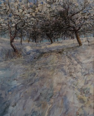 Y. Kopanskyi, Winter, 2016