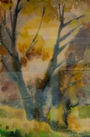 Старе дерево, 1988, пап.акв., 32х49