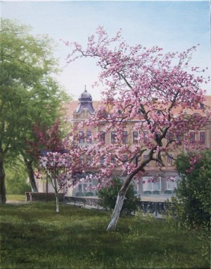 Cherry Blossom, oil on canvas